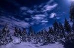 In the moonlight II